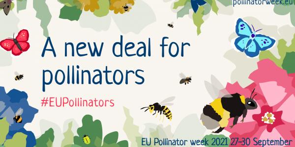EP narys L. Mažylis: ES bičių ir kitų apdulkintojų savaitės renginiuose – didelis dėmesys bičių apsaugai ir tvarumui